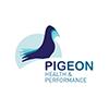 pigeon_hp